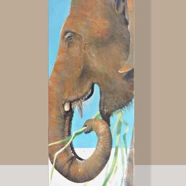 Thumbnail for Sri Lankaanse Olifant